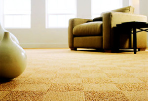 carpet-picture