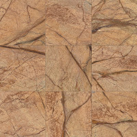 Rainforest Brown polished 12x12 marble
