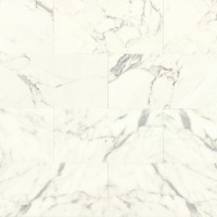 Calacatta Honed 12x24