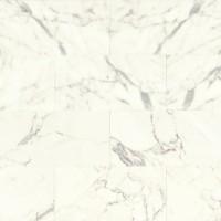 Calacatta Polished 12x24 Marble