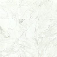 Calacatta Polished 18x18 Marble